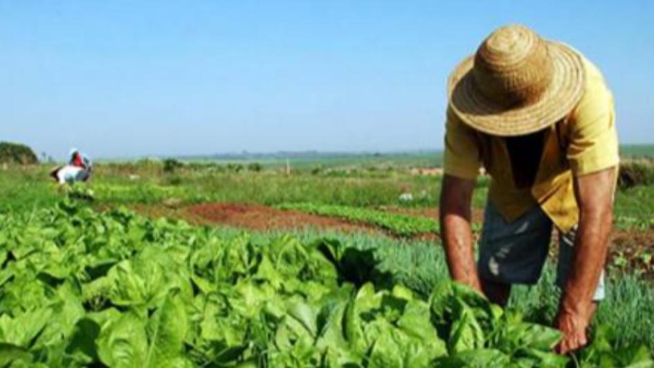 Más de 10.700 productores agrarios recibieron un crédito por primera vez